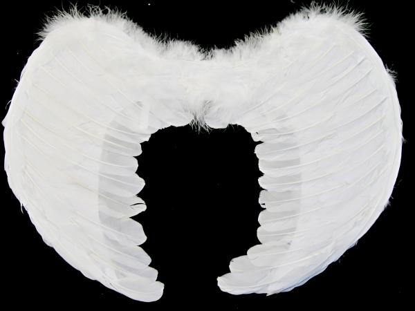 Křídla bílá péřová 1316 - Li